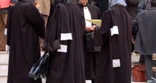 2012-avocat_738578927